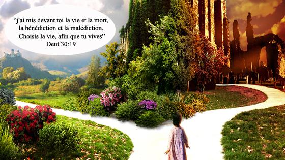 Si Dieu existe, pourquoi le mal, la détresse et la souffrance ? Dieu est-il responsable ?