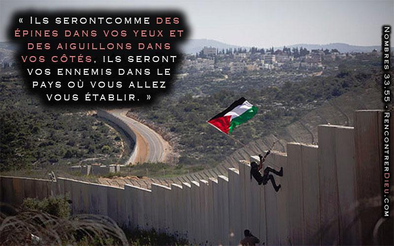 epine aiguillon palestine israel-800X500
