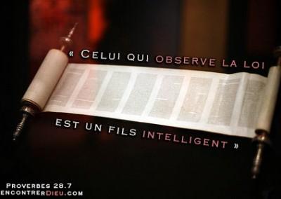 Observer la loi de Dieu donnée à Moïse (Torah) : bénédiction, malédiction ou être déchu de la grâce ?