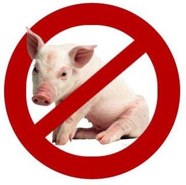 porc impur loi torah