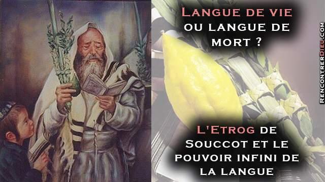Langue de vie ou langue de mort l 39 etrog de souccot et le for Astrologie ou le miroir de la vie
