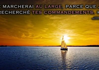 Le Véritable Amour et la Véritable Liberté selon Dieu – Paracha Michpatim(Exode 21 – 24)