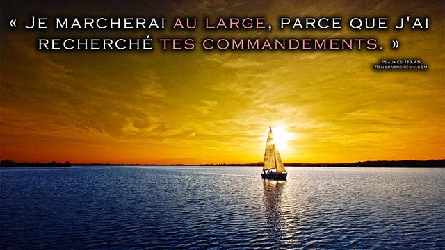 large liberte commandement_640X360