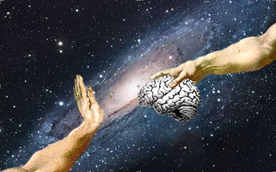 cerveau dieu homme intelligence