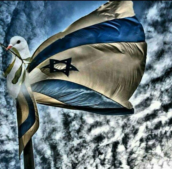 israel colombe paix chretiens
