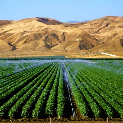 Agriculture-Israel-modif