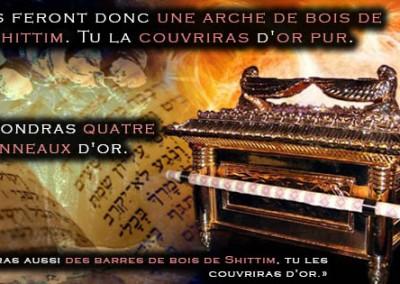 Audio – L'arche de l'alliance expliquée par les Sages d'Israël : un reflet du véritable converti à Dieu