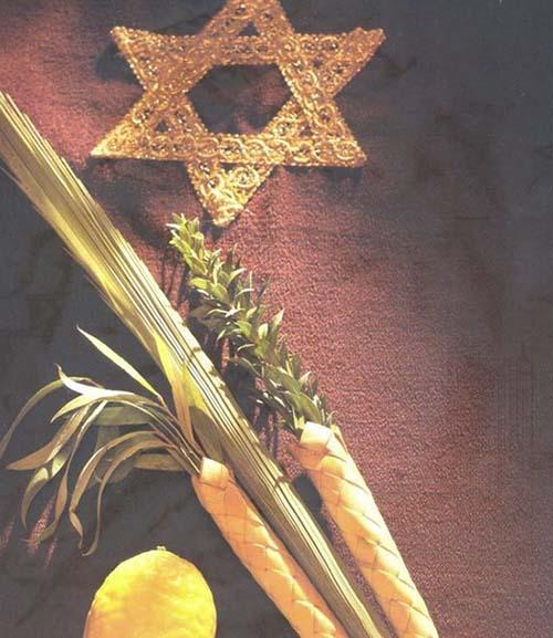 Loulav unite israel