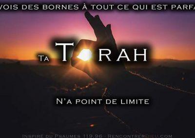 Une Torah sans frontière ! Pépites de la Paracha Nasso