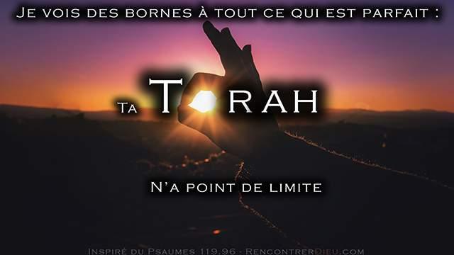 Une Torah sans frontières ! Pépites de la Paracha Nasso