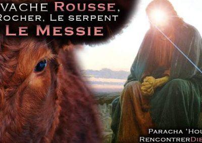 La vache rousse, le Rocher, Le serpent et Le Messie d'Israël – Paracha 'Houkat