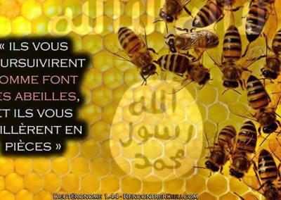Prophétie des temps de la fin: Les abeilles de l'Apocalypse ! Paracha Devarim