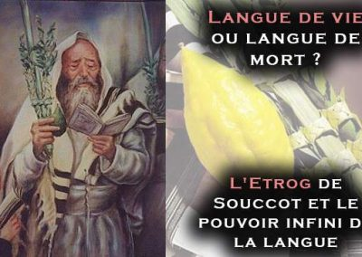 Langue de vie ou langue de mort ? l'Etrog de Souccot et le pouvoir infini de la langue