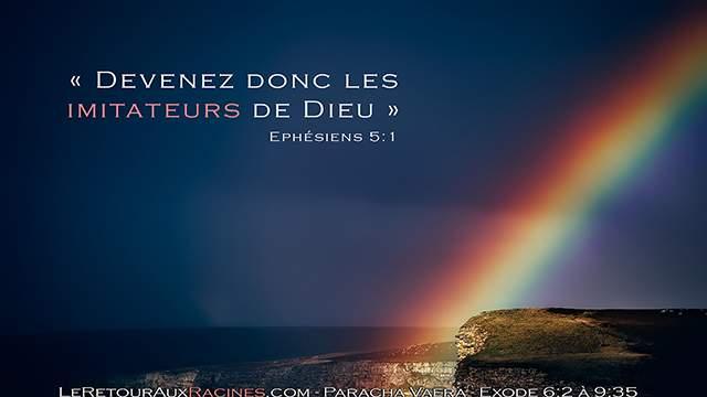 Une clé précieuse pour garder le zèle et gagner le Bon Combat de la foi : fais des efforts et place un arc-en-ciel dans ta vie ! Paracha Vaéra