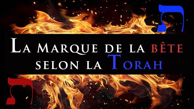 Marque de la bête, crise mondiale et vaccin: que dit la Torah ? Pistes de réflexion (Michpatim)