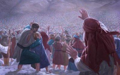 Fête de la révélation du Sinaï (Shavouot/Pentecôte) : La grande consolation qui change la fournaise en Oasis